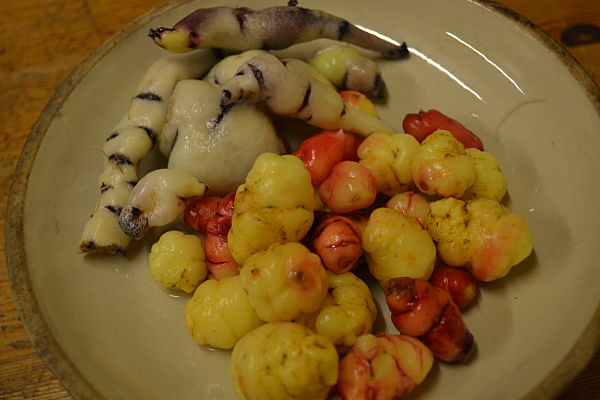Mashua and oca tubers