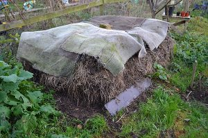 Free-standing compost heap