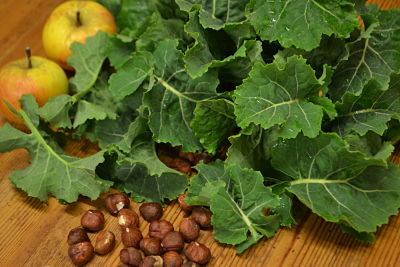 Kale, hazelnuts and apples