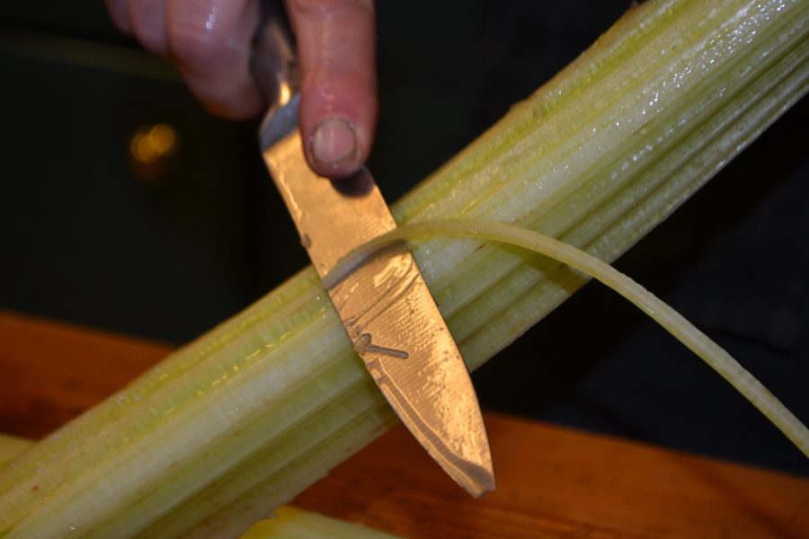 Trimming a cardoon leaf stalk